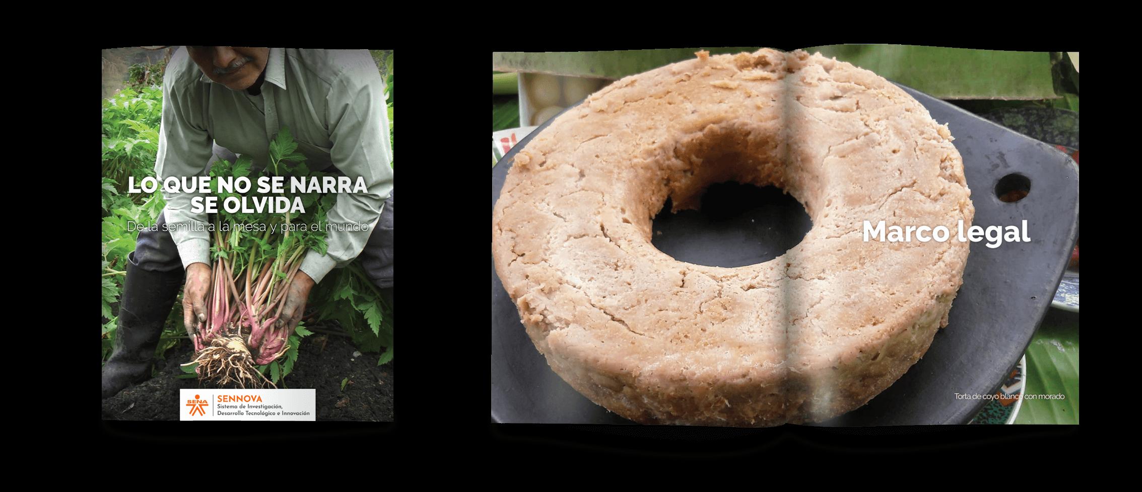 brochure-sena1
